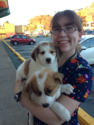 Michelle, Registered Veterinary Technician at Sunnyview Animal Care cuddling puppies! - your Bedford Veterinarian in Halifax, Halifax Regional Municipality, Nova Scotia  CO2 Laser Surgery, Therapy Laser, AAHA