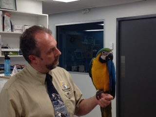 Dr G with Blue & Gold Macaw