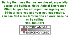 Metro Animal Emergency Instructions