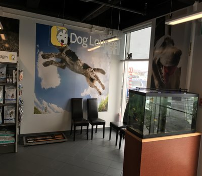 Separate lounges for our pets to relax in with Fish Tanks separating your pet from others, contributing to your Fear-Free experience!