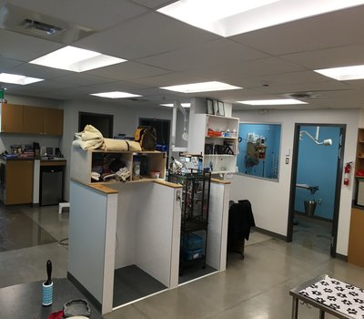 Showing our technican desk, and recovery areas for our patients - your pet is closely monitored after any procedure while with our Registered Veterinary Technicians!