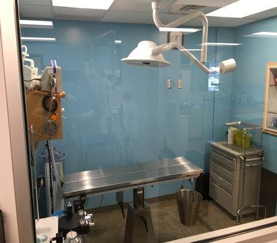 Surgery Suite showing our Heated surgery table, and other equipment!